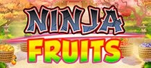 <div>Don't get fooled by the friendly geisha, or the peacefully falling rose petals, this is a juicy slashing style slot machine where every spin and slice is monitored by the Ninja Master.</div>