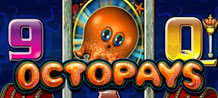 Beneath the murky ocean, lies an epic slot game that will amaze you with its unique features and catching theme. Meet the baby octopus who promises great rewards, especially if you are taken into the Kraken Feature, where a legendary sea monster will provide you with some terrific prizes!