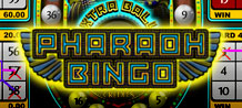 Would you like a new way to play bingo? Pharaoh Bingo offers fast and exciting gameplay with the chance of huge winnings! Have the luck of the pharaohs in this fantastic bingo game!